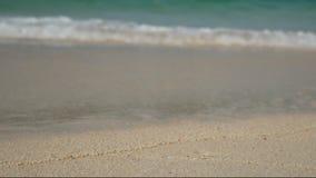 4K 海的软的波浪,在白色沙子海滩的清楚的水与拷贝空白区 夏天假日背景的海海滩 股票录像