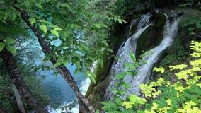 4K 瀑布在普利特维采湖群国家公园,一个美好的地方,克罗地亚 股票录像