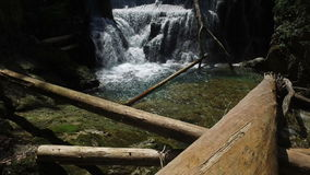 4K 瀑布在Radovna河的Vintgar峡谷 清洗大海和木日志 特里格拉夫峰国家公园,流血的谷 股票视频