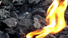 4K 烤肉的木炭火 烟和火焰 热的煤炭和火焰在烤肉 股票录像