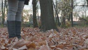 4k - 走在公园的少妇在秋天,拾起叶子 股票录像