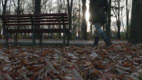 4k - 走通过秋叶的少妇在公园 股票视频