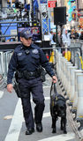 K-9 in Times Square Royalty Free Stock Photo