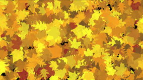 4k Abstract Gold maple plants leaves,lush autumn season leaf nature wind breeze. stock video