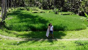 4K Aerial drone shot of couple on vacation standing on a rice paddy terrace fields on Bali island. Indonesia stock video