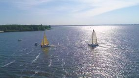 4K Aerial footage. Zoom in yacht and trimaran at the regatta stock video