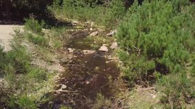 4k aerial of rocky water stream flowing through green summer mountain forest stock video footage