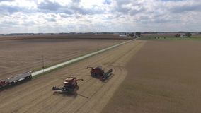 4k aerial shot of big agriculture combine machines vehicles harvesting organic crops wheat on farming field on sunny day stock footage