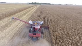 4k aerial shot on big agriculture combine truck machine tractor vehicle harvesting organic crop wheat from farming field stock video