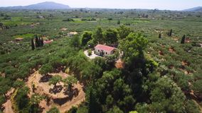 4K Aerial view of olive tree field in Zakynthos Zante island, in Greece. 4K Aerial view of olive tree field in Zakynthos Zante island in Greece stock video