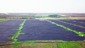 4K Aerial view of Solar Panels Farm solar cell with sunlight.Drone flight fly over solar panels field renewable green. Alternative energy concept stock video footage