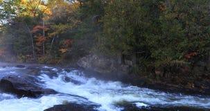 4K Algonquin UltraHD ορμητικά σημεία ποταμού ποταμών στα όμορφα χρώματα φθινοπώρου απόθεμα βίντεο