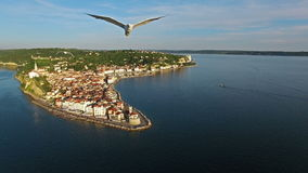 4K. Amazing flight with birds over old city Piran, aerial view. Slovenia stock video footage