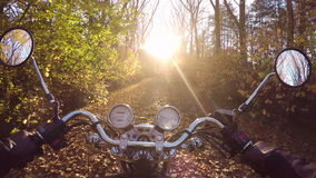 4K. Amazing motorcycle ride towards sunset on the golden forested road in autumn, wide point of view of rider. stock video