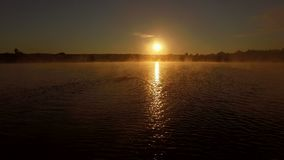 4k antenn - yrkesmässig simmare i sjön på soluppgång lager videofilmer
