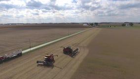 4k anteny strzał duzi rolnictwo syndykata maszyn pojazdy zbiera organicznie uprawy pszeniczne na uprawiać ziemię pole na słoneczn zbiory