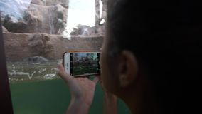 4K Aziatische vrouw die foto met telefoon die van Pygmy Hippo nemen in dierentuin zwemmen stock videobeelden