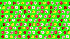 4K. Background of blooming roses time-lapse with green screen, Ultra HD stock video footage