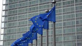 4K Bandiere di Unione Europea in una fila che ondeggia nel vento, Commissione Europea video d archivio