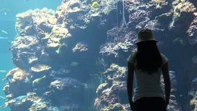 4k, Besuchermädchen, das unter Wasser Fische des Korallenriffs im asiatischen Aquarium schaut stock video