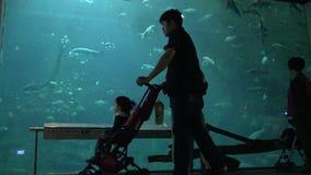 4k, Bezoekers tegen een reusachtige onderwaterdietank worden met vissen wordt gevuld gesilhouetteerd die stock video