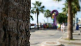 4K borrão abstrato dos povos no terno de corrida colorido que movimenta-se na estrada da praia para o exercício com a palmeira no vídeos de arquivo