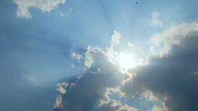 4K céu azul nebuloso com feixe luminoso do sol com voo do pássaro com som natural video estoque