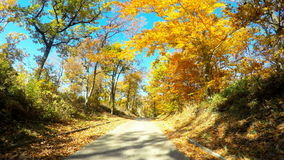 4k_car driving through autumn forest stock footage