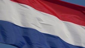 4K Chorwacja chor?gwiany falowanie w wiatrze Tricolour dmucha zbiory wideo