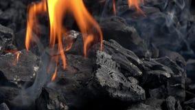 4K Close-up van het branden van steenkolen in de barbecuegrill De steenkool begint te branden stock footage