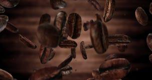 4K Coffee beans falling down loop stock video
