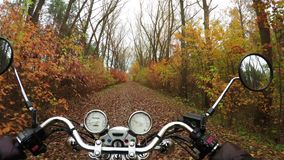4K Compilation Video. Fantastic motorcycle ride on the road in color forest, wide point of view of rider. stock footage