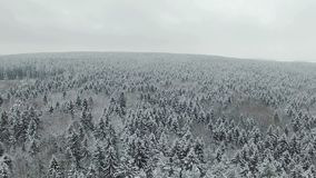 4K Compilation Video. Flight above frozen winter forest on the north, aerial view stock video