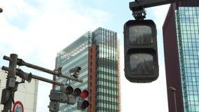 4K crosswalk znaka Tokio miasta ruchu drogowego zmiany Zwyczajna zieleń czerwony kolor zdjęcie wideo