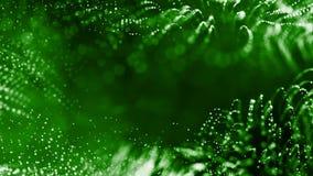 4k 3d rendent des particules de lueur en tant que fond dynamique sans couture abstrait avec la profondeur du champ et du bokeh La banque de vidéos