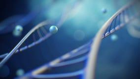 4K 3d a rendu la longueur de plan rapproché avec des plis de molécule d'ADN dans une hélice La science de fond ou vidéo médicale