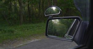 4K - Das Auto bewegt sich entlang den Waldweg stock video