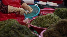 4K de Koreaanse Vrouw aan het Werk in Zeevruchtenmarkt verkoopt Verse Tweekleppige schelpdieren in Jagalchi Busan stock video