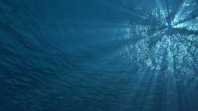4K de onderwater oceaananimatie van de golven naadloze lijn met lichte stralen stock video
