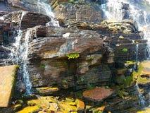 4k, die Rocky Mountain-Gletscher überraschen, strömen Wasserfall im Sommer mit Blumen Stockbilder