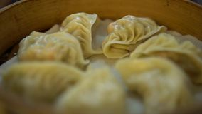 4K Dish dumpling in restaurant. Traditional chinese food served in dim sum. 4K Dish of dumpling in a restaurant. Traditional chinese food served in dim sum at stock video