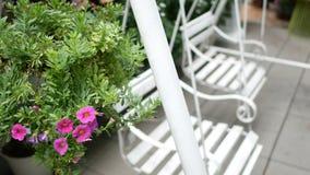 4K dois balanços vazios do branco que balançam em um jardim verde com as flores cor-de-rosa bonitas para relaxar vídeos de arquivo