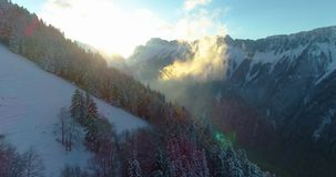 4k drone shot over snow forest in swiss montain near montreux. 4k drone shot over snow forest in swiss montain stock video footage