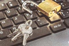 Kędziorek chip komputerowy analizy naprawa peceta laptop Zdjęcie Royalty Free