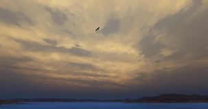 4k Eagles hovering over high sky,lake & mountain,Bright sun & cloud at dusk.