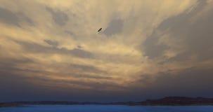 4k Eagles que asoma sobre el alto cielo, lago y montaña, sol brillante y nube en la oscuridad metrajes