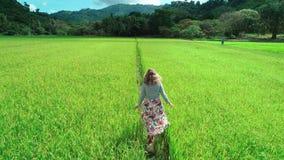 воздушный отснятый видеоматериал трутня 4K белокурой девушки в платье идя вдоль полей риса в El Nido, Филиппинах сток-видео