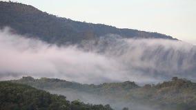 4k empañan atravesar el valle de la montaña en el parque nacional de Khao Yai, Tailandia almacen de video