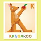 K est pour le kangourou Lettre K Kangourou, illustration mignonne blanc animal de vecteur de fonds d'image d'alphabet Images stock