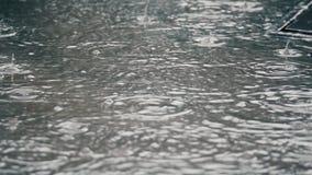 4K establishing shot of rain falling on pavement. stock video footage